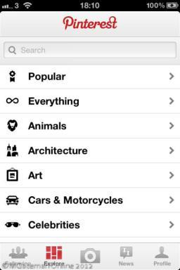 iOS Pinterest 05