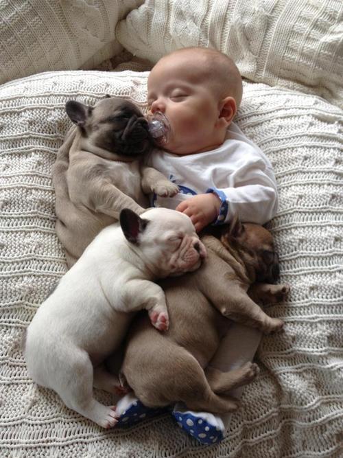 Baby & Dog 04