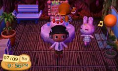 ACNL Chrissy Birthday