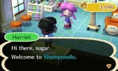 ACNL Shampoodle