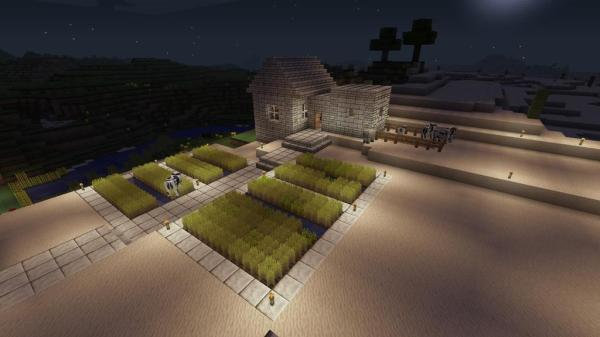 MC PS4 House